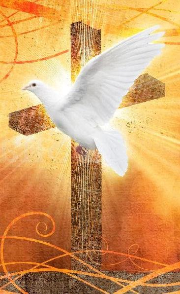 duh_sveti-križ