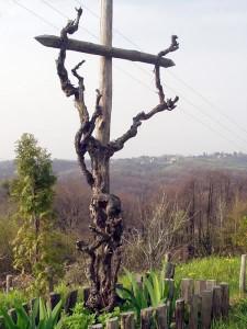 Bozji vinograd