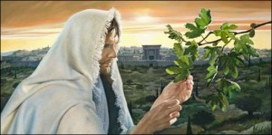 Isus i smokva
